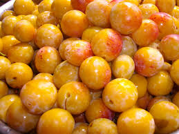 Mirabelle Plum Jam from Mendocino Made Marvels